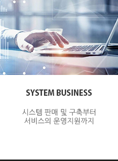 systembussiness